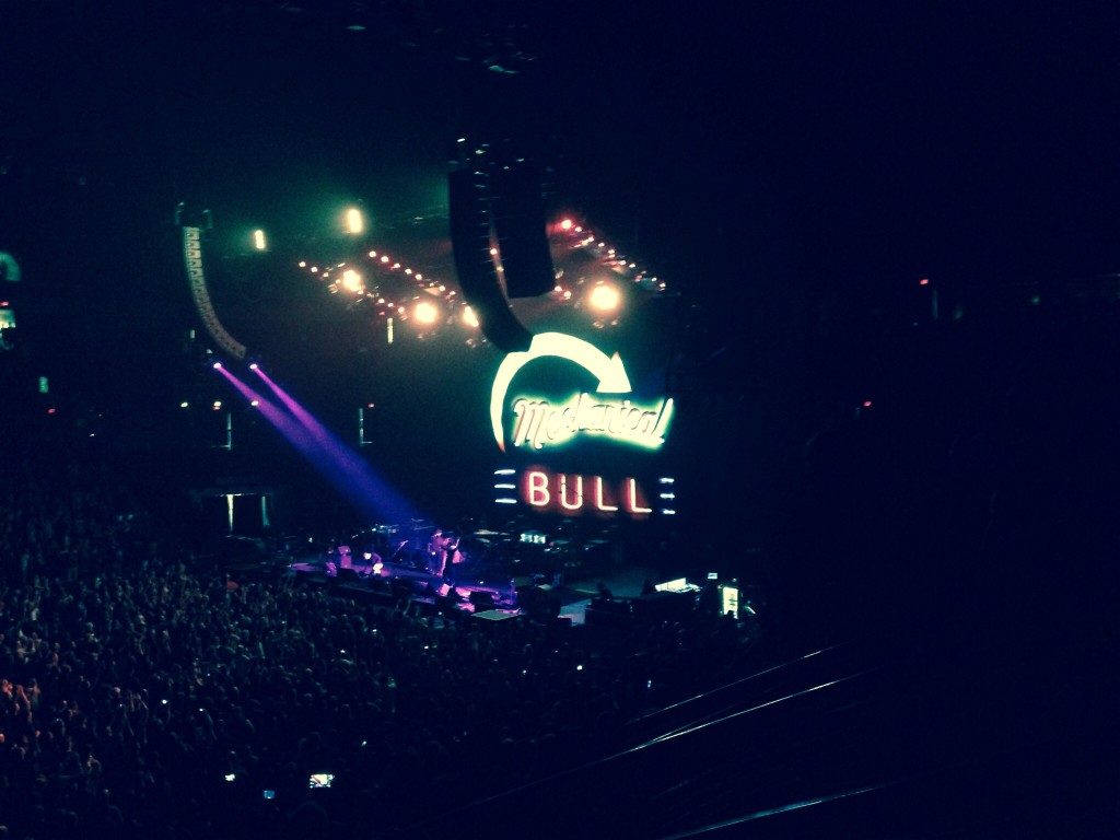 Mechanical Bull Tour